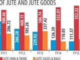 Dr Moazzem considers the tax benefit for jute goods exporters as a relief for the industry